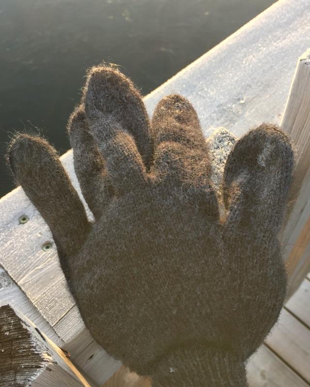 wool glove.jpg