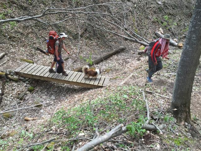 70lb hiker & Soheil w Delta